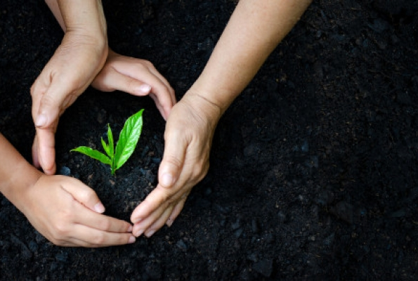 0001_environment-earth-day-hands-trees-growing-seedlings_34998-96_1551170755-ec504094bfa5f01b757479f9b4108a22.jpg