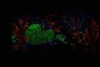 0002_andriaus-lamausko-nuotr-2_1599985616-45696338c7c4a400083aef962cded1b1.jpg